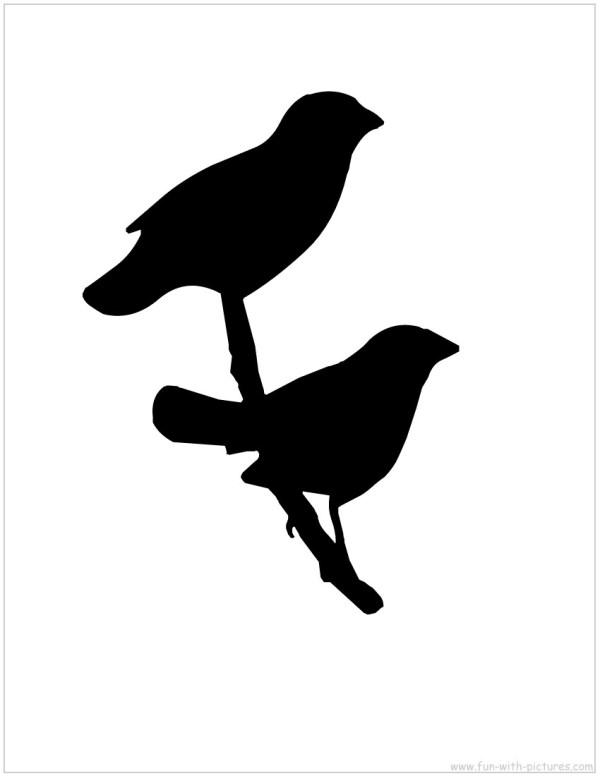 bird silhouette - clipart