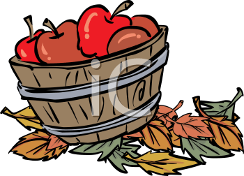basket of fall apples - royalty