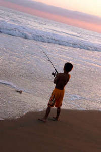 Free Image of a Boy Fishing on the Beach. Click Here to Get Free Images at Clipart Guide.com