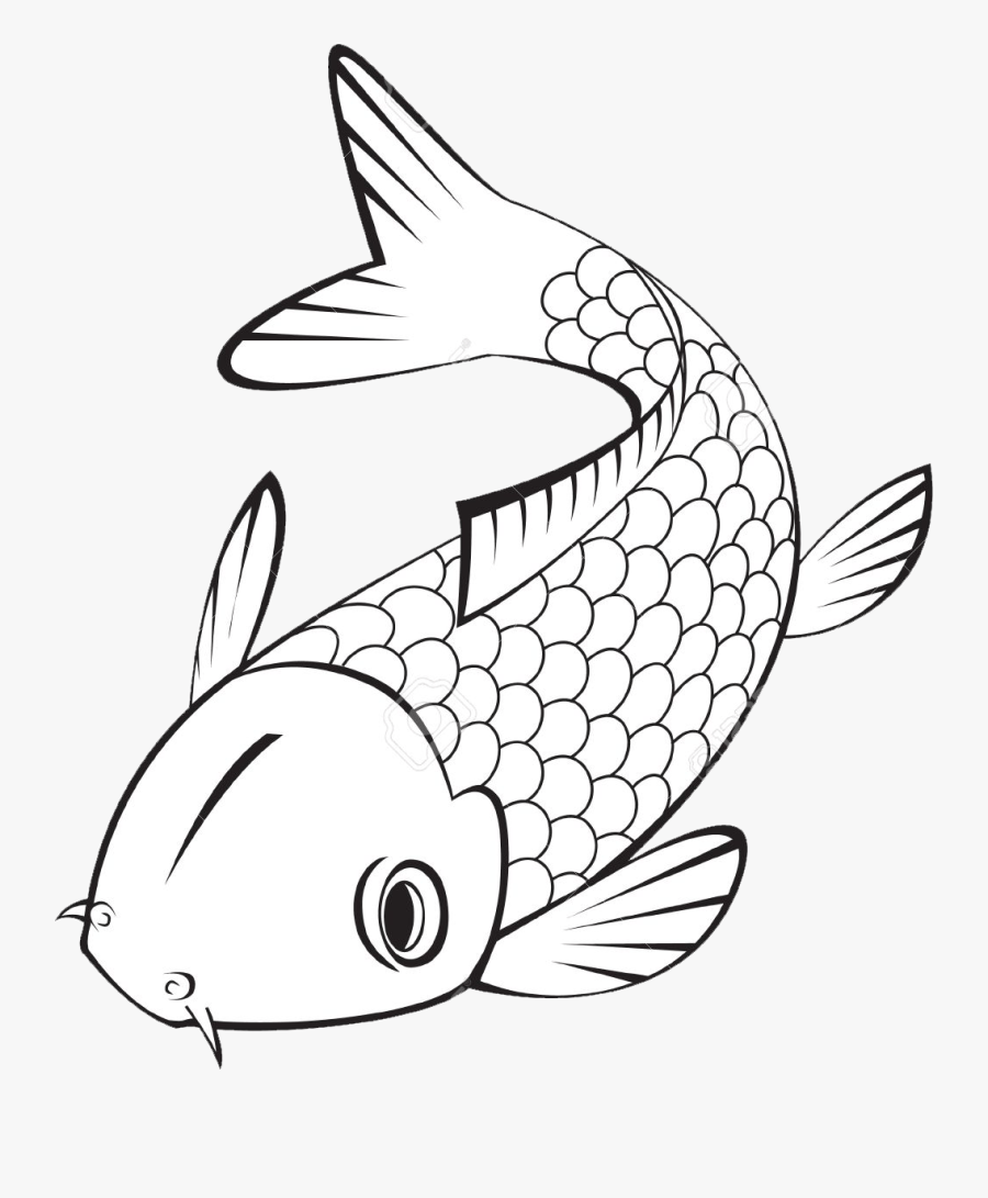 Koi Fish Clipart Black And White Easy Carp Drawing Free Transparent Clipart Clipartkey