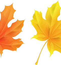 fall leaf clipart no background yellow and orange leaves 5946x3374  [ 5829 x 3336 Pixel ]