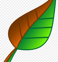 leaf of apple clipart green free download clip art green and brown leaf 2935 [ 840 x 1223 Pixel ]