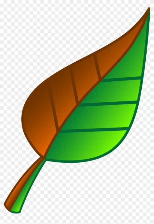 small resolution of leaf of apple clipart green free download clip art green and brown leaf 2935