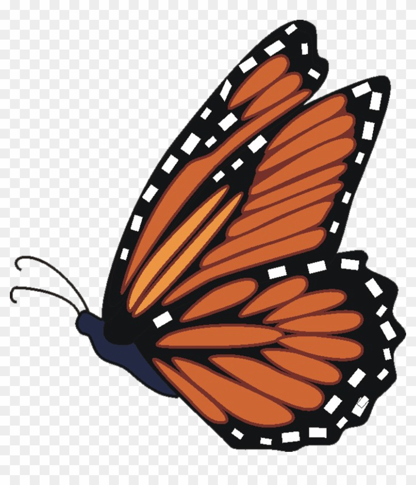 hight resolution of butterfly clip art free clip art monarch butterfly free butterfly clipart