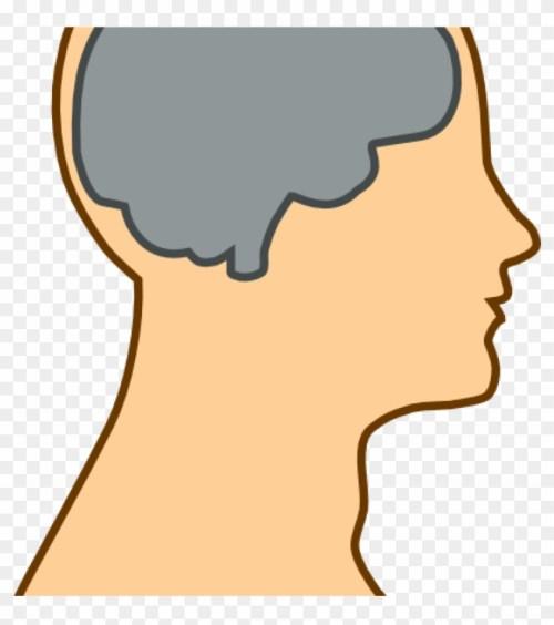 small resolution of mind clipart medical diagram of brain clip art at clker brain clip art 81604
