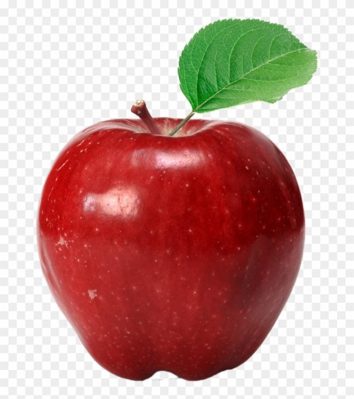 small resolution of apple red delicious eating fuji apple