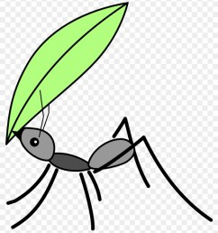 ant insect computer icons clip art ant carrying a leaf [ 840 x 965 Pixel ]
