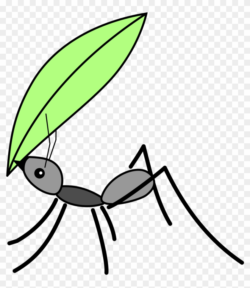 hight resolution of ant insect computer icons clip art ant carrying a leaf