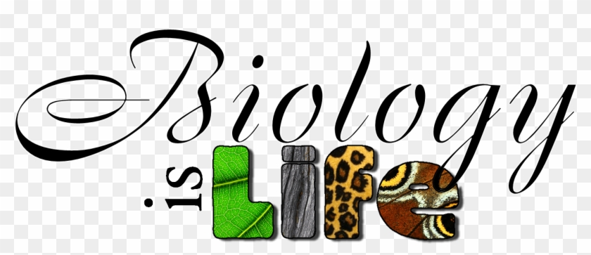 Biology Title Page Clipart Biology Project Cover Page Design Free Transparent Png Clipart Images Download