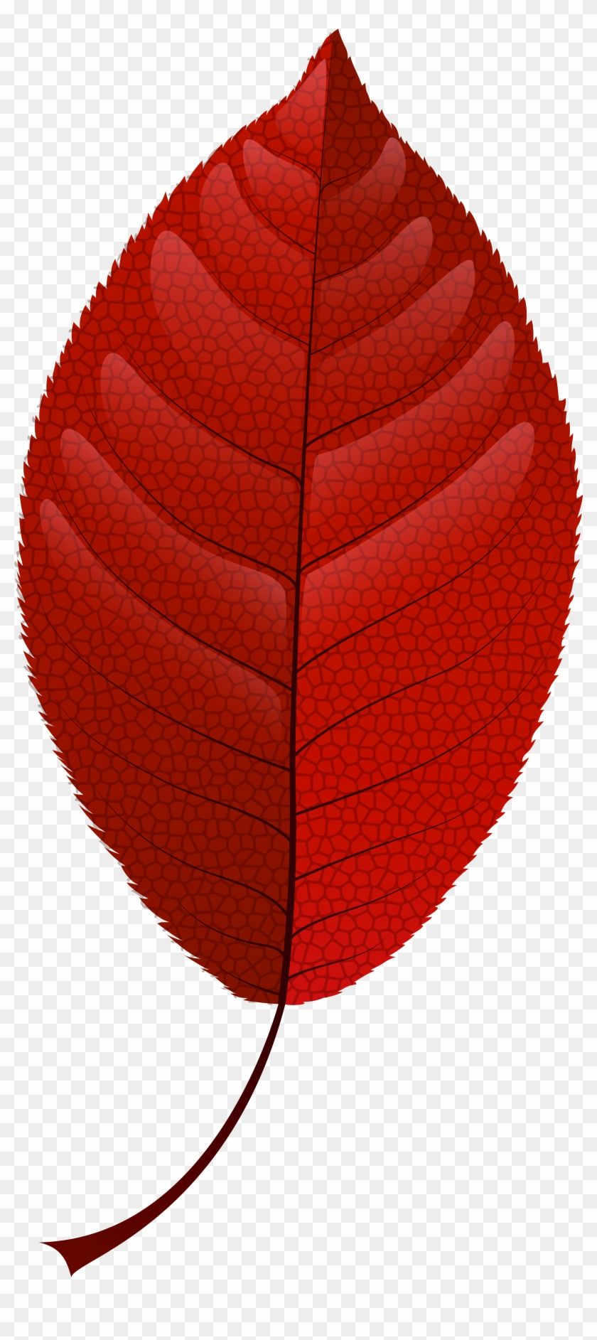 medium resolution of red fall leaf png clip art lantern