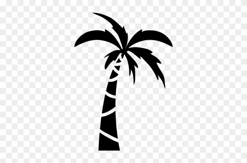 palm tree with leaves