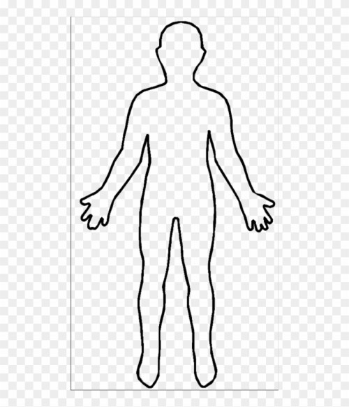 small resolution of human body outline picture human body outline free transparent