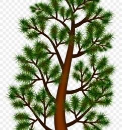 pine trees clipart 12 buy clip art portable network graphics [ 840 x 1340 Pixel ]