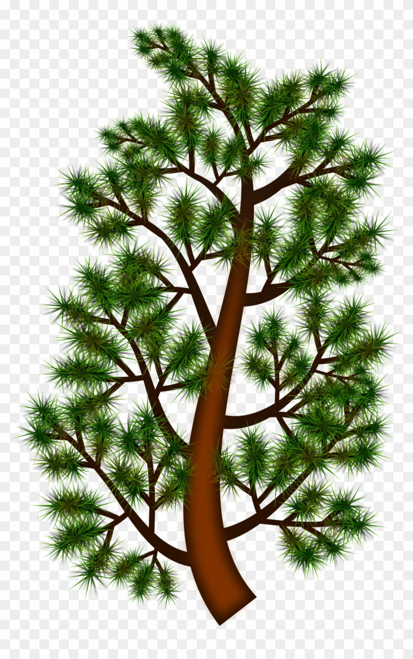 hight resolution of pine trees clipart 12 buy clip art portable network graphics