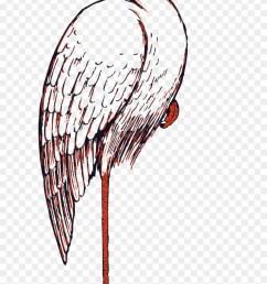 sea bird clipart bird beak stork clip art [ 840 x 1392 Pixel ]