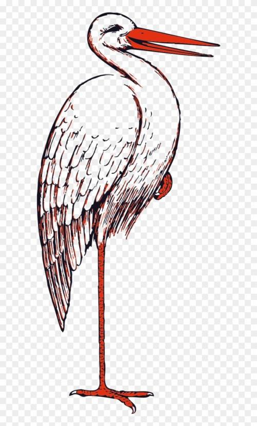 small resolution of sea bird clipart bird beak stork clip art