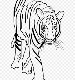 vector clip art tiger clipart black and white png 201445 [ 840 x 1067 Pixel ]