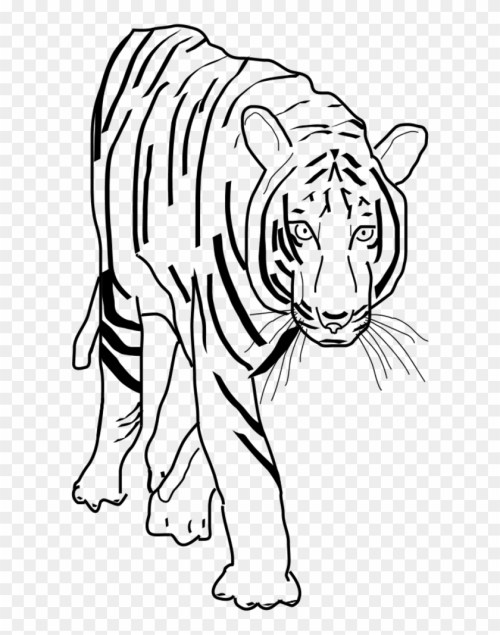 small resolution of vector clip art tiger clipart black and white png 201445