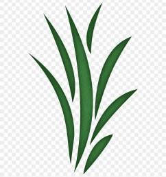 seaweed free grass clipart clip art library grass blade clip art 27170 [ 840 x 950 Pixel ]