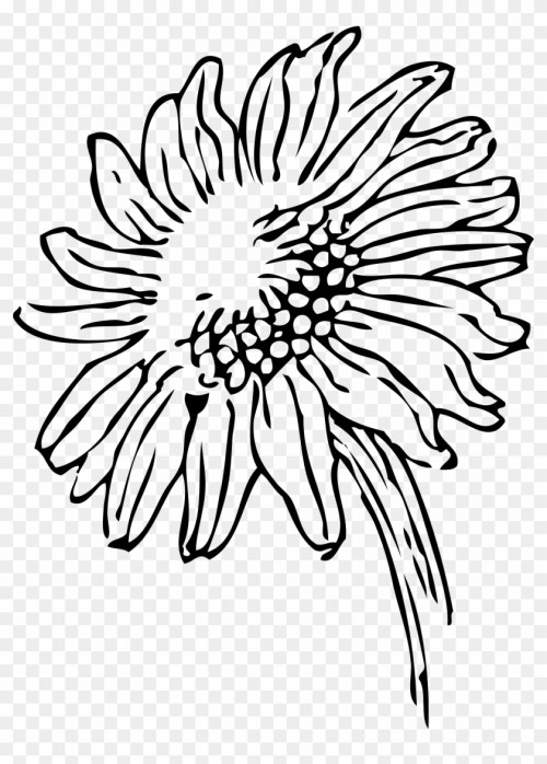 small resolution of plant clipart black and white black and white sunflower clipart 27369