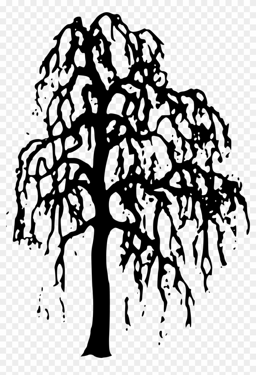 medium resolution of nature clipart willow tree clipart gallery free clipart black and white outline willow tree