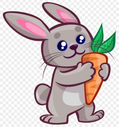 destiny cartoon rabbit pic free to use public domain rabbit clipart 47117 [ 840 x 947 Pixel ]