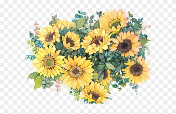 common sunflower watercolor painting