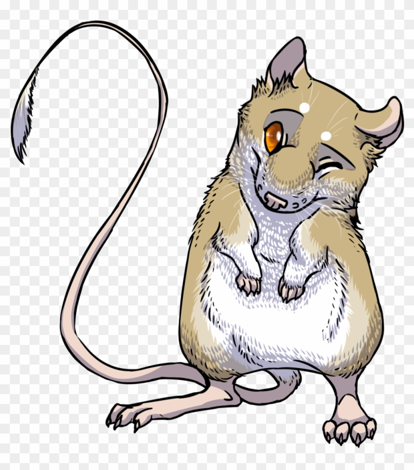 hight resolution of rat clipart kangaroo rat giant kangaroo rat transparent 286541