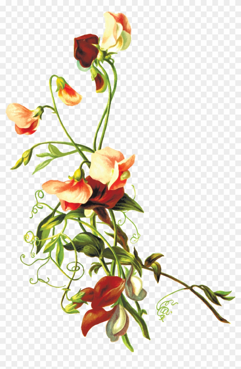 hight resolution of free clipart of flowers flower leaf png
