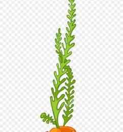 algae seaweed aquatic plants clip art algae vector 302596 [ 840 x 1165 Pixel ]