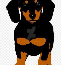 the dachshund by stefanh13 dachshund [ 840 x 1207 Pixel ]
