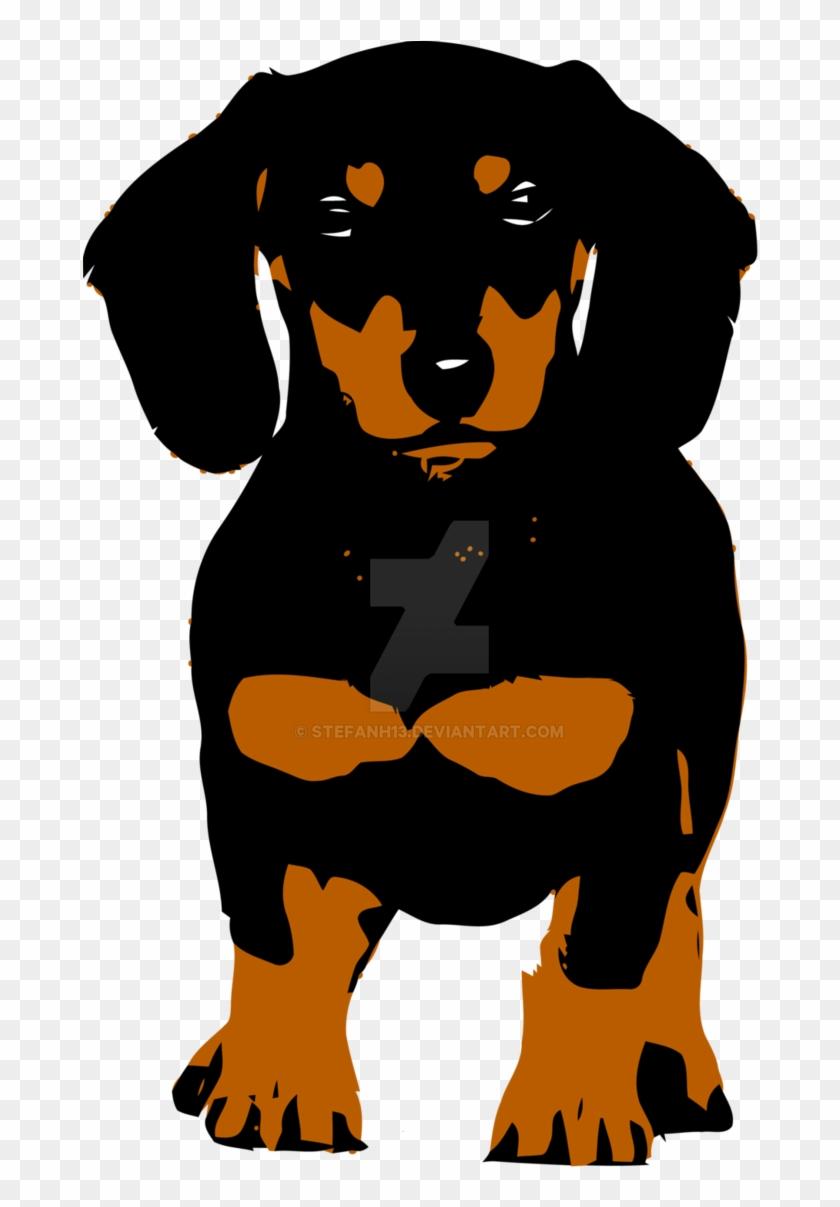 medium resolution of the dachshund by stefanh13 dachshund