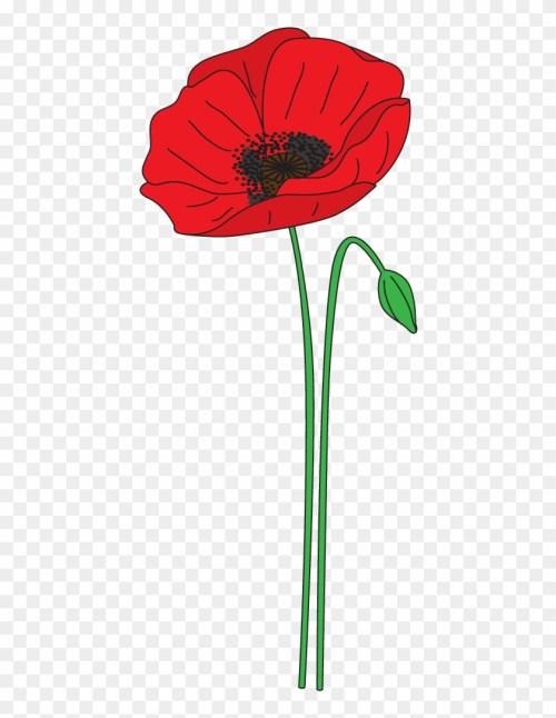 small resolution of poppy clipart anzac poppy anzac day poppy clipart 381962