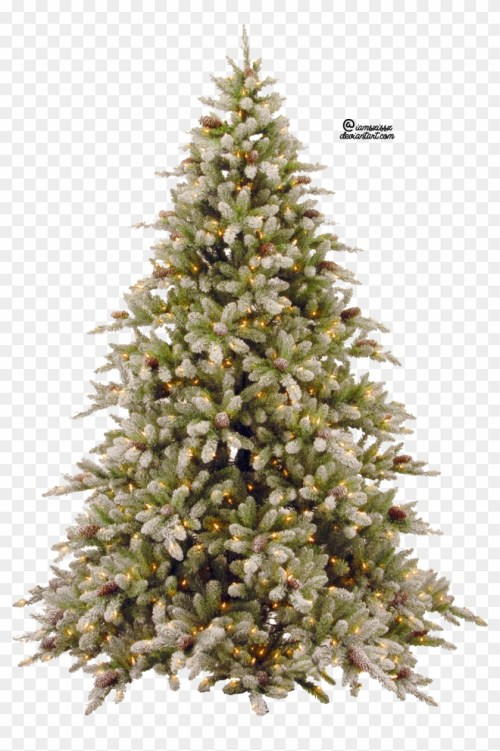 small resolution of pine trees clipart christmas tree png