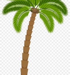 drawing silhouette royalty free illustration coconut tree for drawing png [ 840 x 1339 Pixel ]