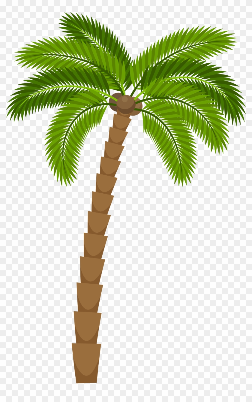 medium resolution of drawing silhouette royalty free illustration coconut tree for drawing png