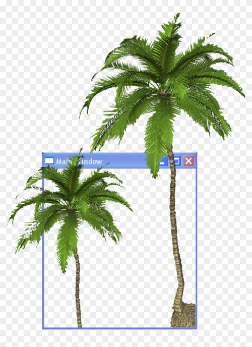 small resolution of arecaceae youtube aesthetics clip art coconut tree transparent background