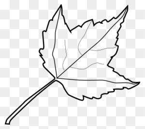 Leaf Clipart, Transparent PNG Clipart Images Free Download