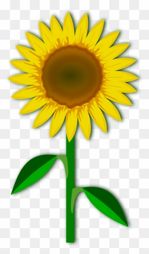 Girasol Clipart Transparent Png Clipart Images Free Download