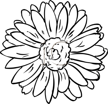 Royalty Free Hibiscus Clip art, Flower Clipart