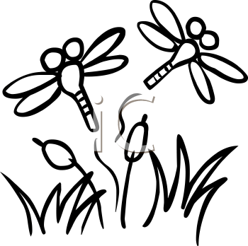 worhpacitol cute dragonfly clipart
