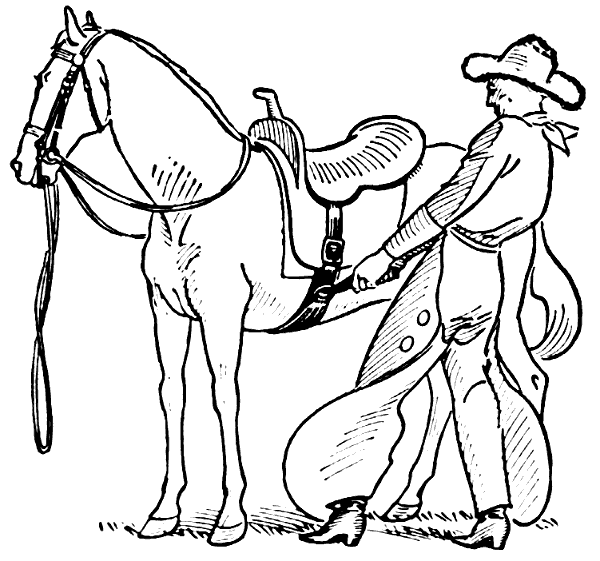 Free Cow Pony Clipart, 1 page of Public Domain Clip Art
