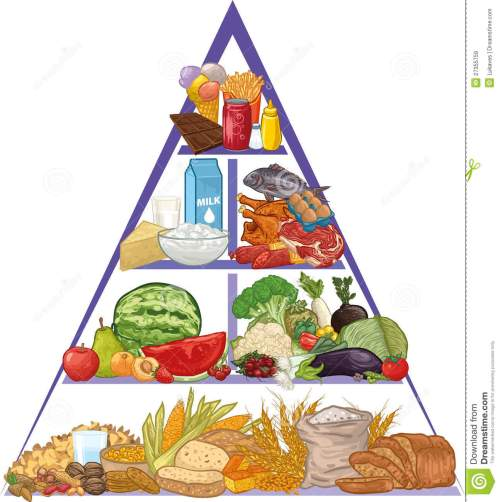 small resolution of food pyramid clip art