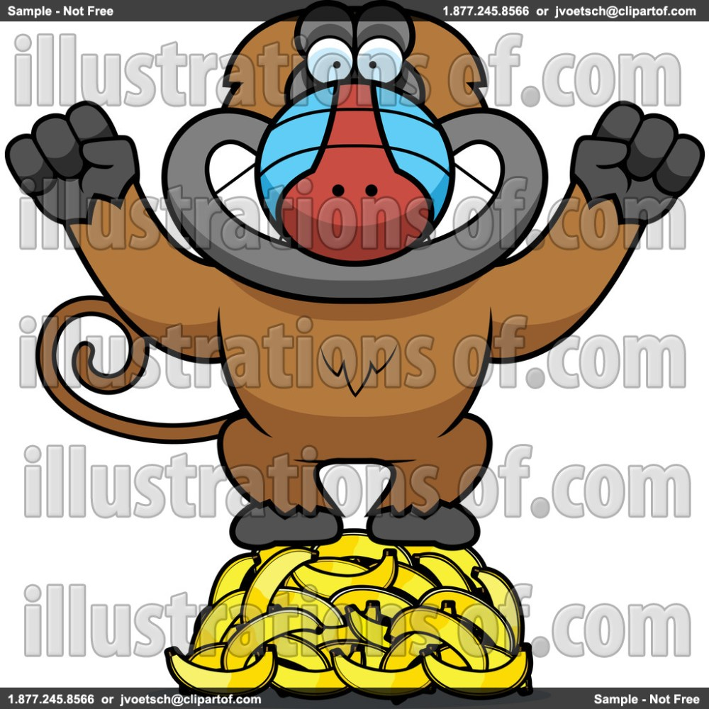 medium resolution of baboon clip art rf baboon clipart