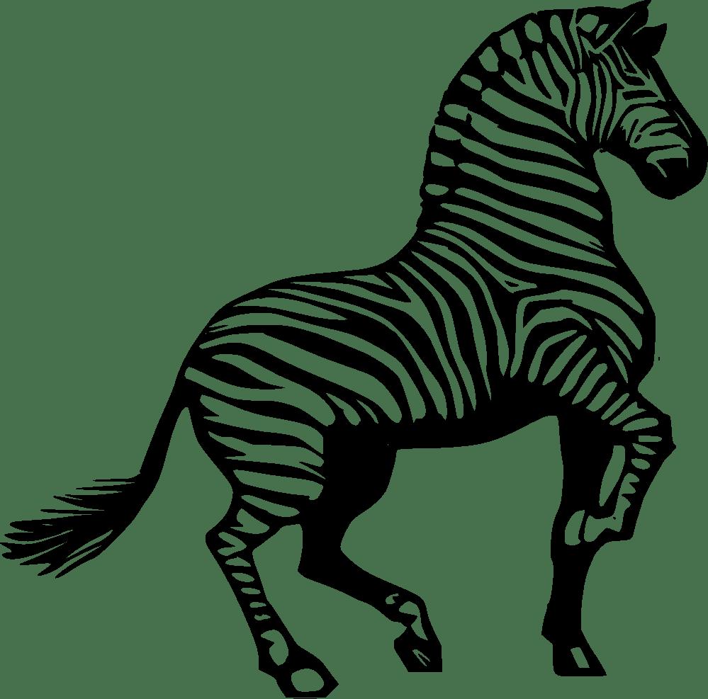 zebra remix black white