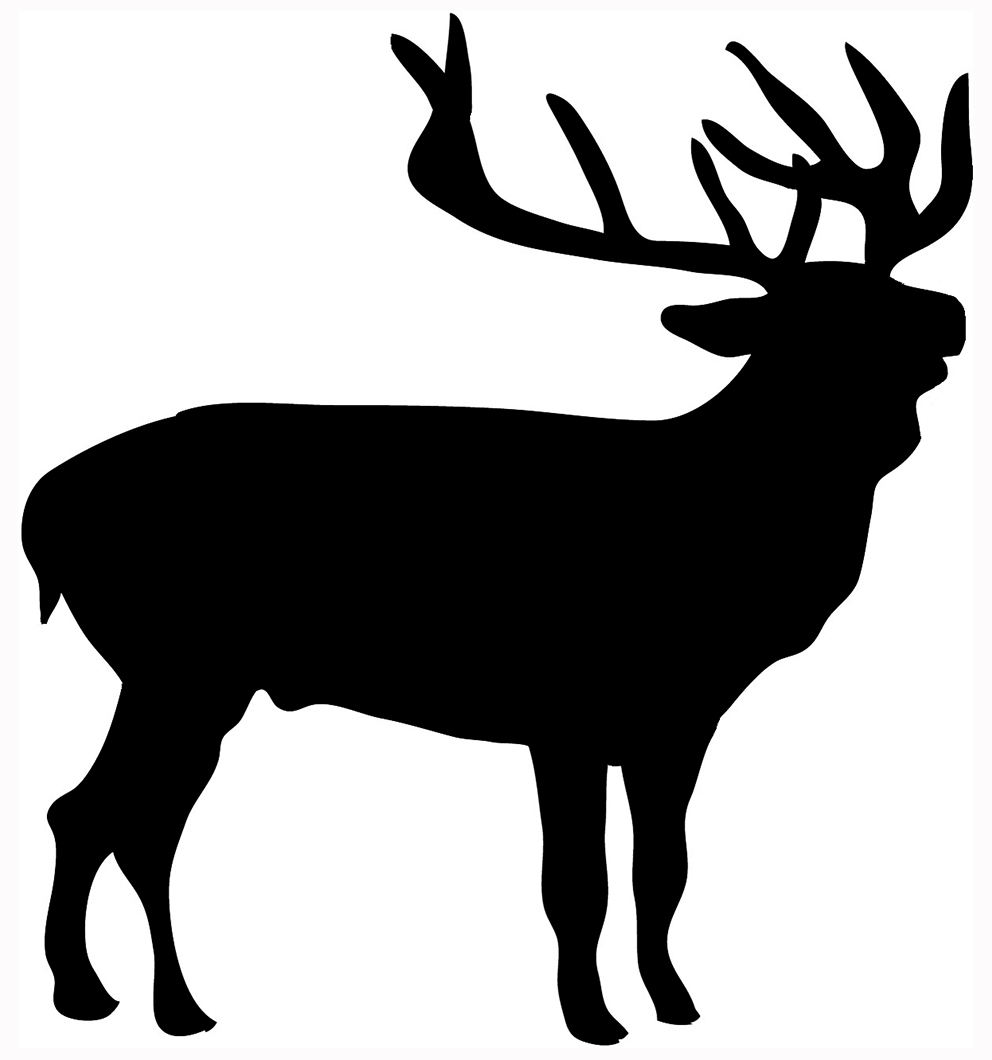 hight resolution of deer silhouette stag