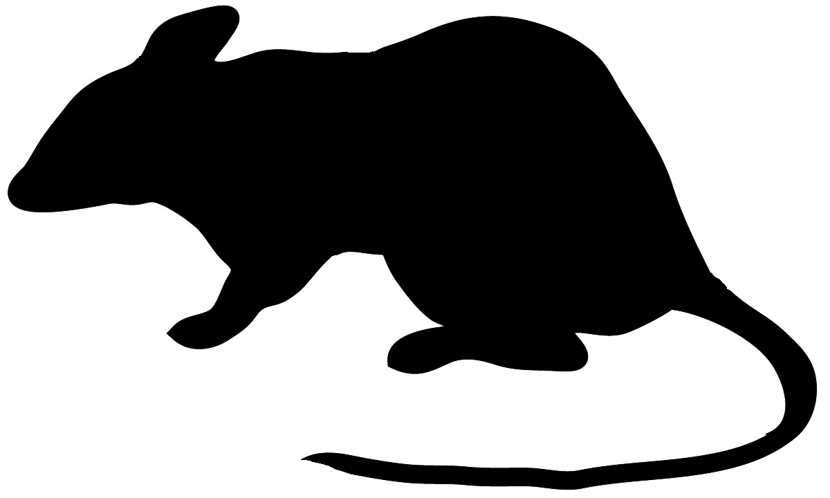 hight resolution of animal silhouette of beaver silhouette of mouse with long tail
