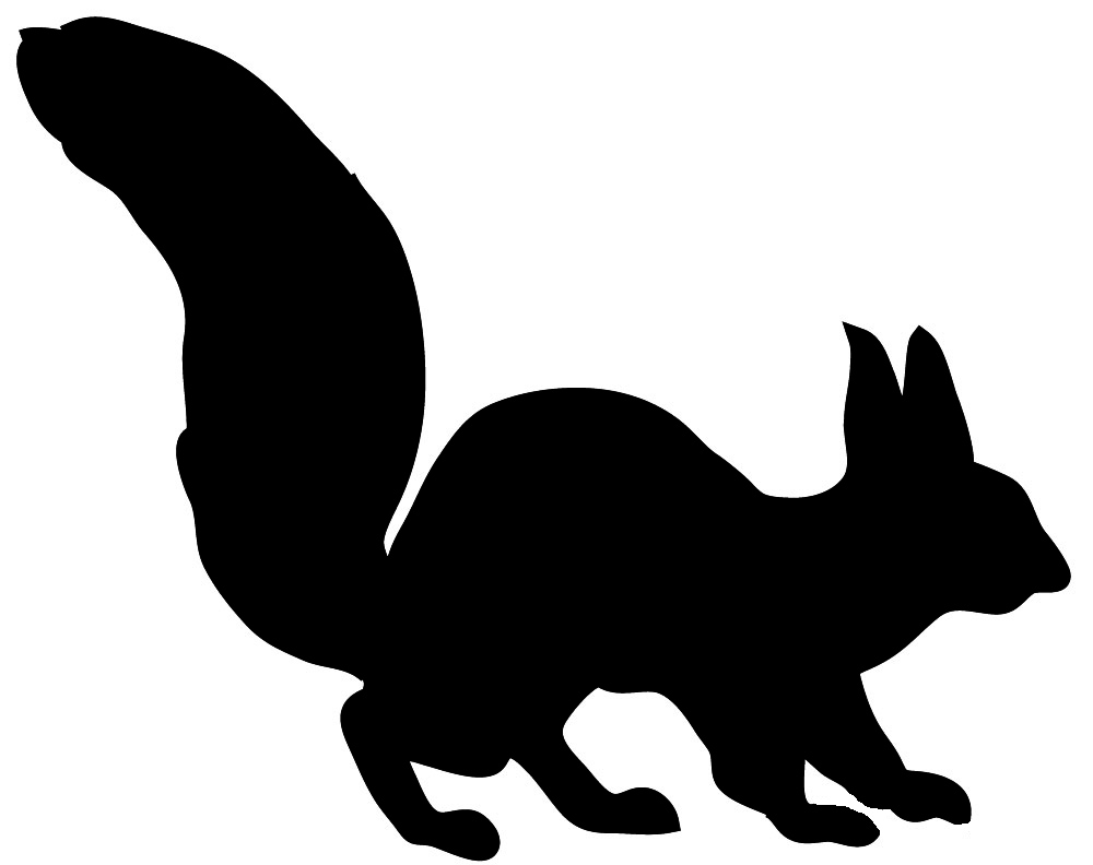 medium resolution of silhouette of squirrel