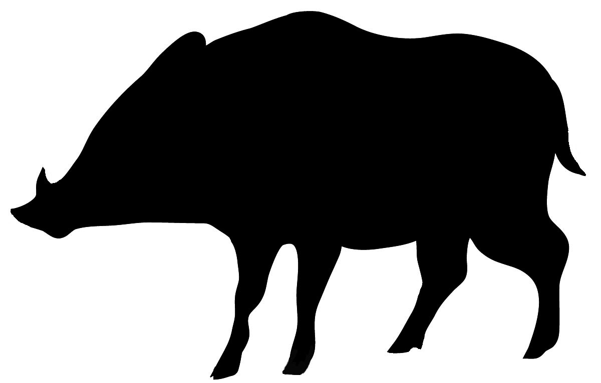 hight resolution of black silhouette of wolf wild boar silhouette in black