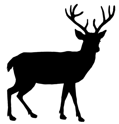 small resolution of beautiful deer silhouette